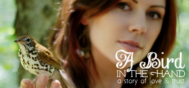 A Bird in the Hand : A Story of Love & Trust