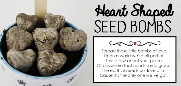 DIY Heart Shaped Wildflower Seed Bombs