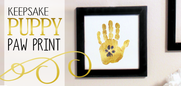 Make this framed keepsake dog or puppy paw print to have forever and memorialize your furry friends. It's both classy and meaningful!