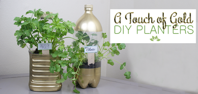 A Touch of Gold DIY Planters from Soda Bottles