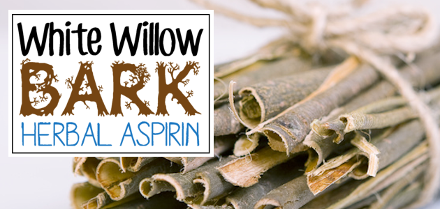 Herbal Aspirin : White Willow Bark