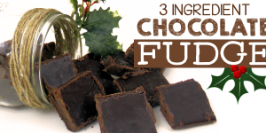 Quick 3 Ingredient Healthy Chocolate Fudge Recipe!