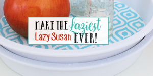 How to Make the Laziest DIY Lazy Susan Ever!