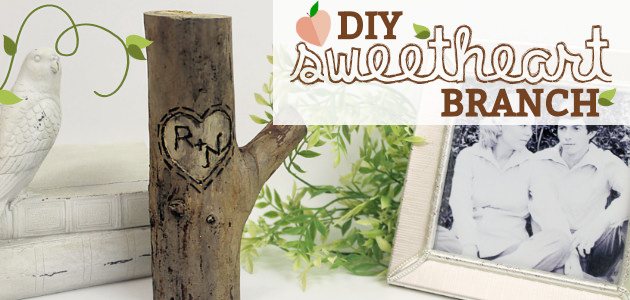 How to Make a Gift Idea for Couples Sweetheart Branch