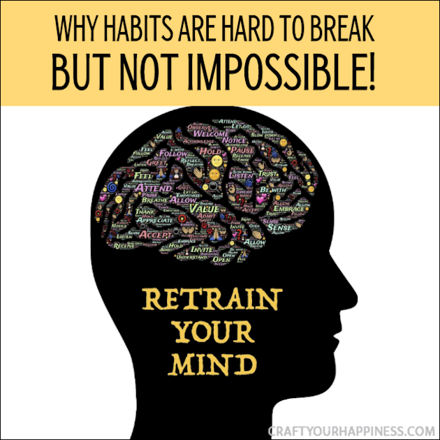 Every wonder why habits are hard to break? Stop beating yourself up. It's not weakness its physiology! And yes, you can change it!