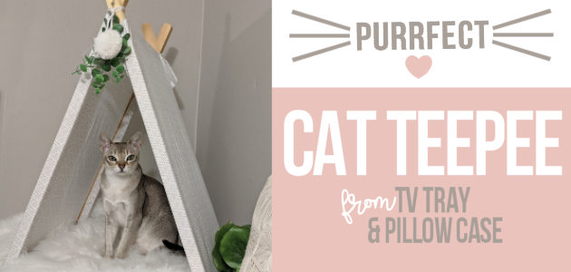 If you're a cat person (or looking for an awesome gift for someone who is) we'll show you how easy it is to make a DIY cat teepee from an old TV tray!