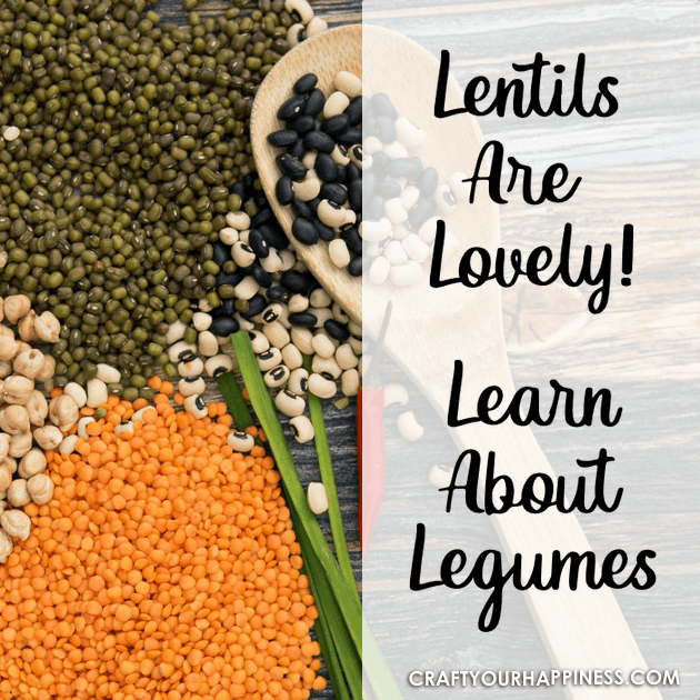 They are a group of plant foods which make up some of the most delicious and nutritional products available. learn about lentils and check out our recipe!