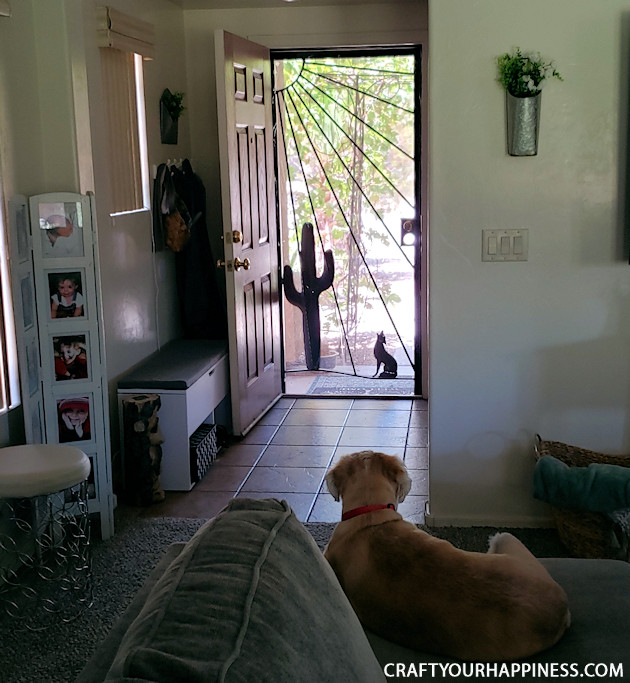 If you live where it's extremely hot or cold and have a screen door with no glass here is a fairly simple DIY removable clear screen door cover you can make for minimal cost.